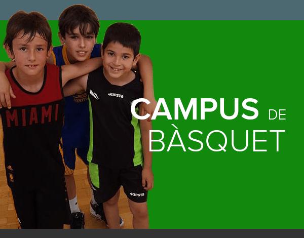 banner campus de basquet